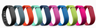 fitbit_flex10color.jpg